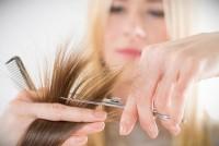 Летний экспресс курс для парикмахеров